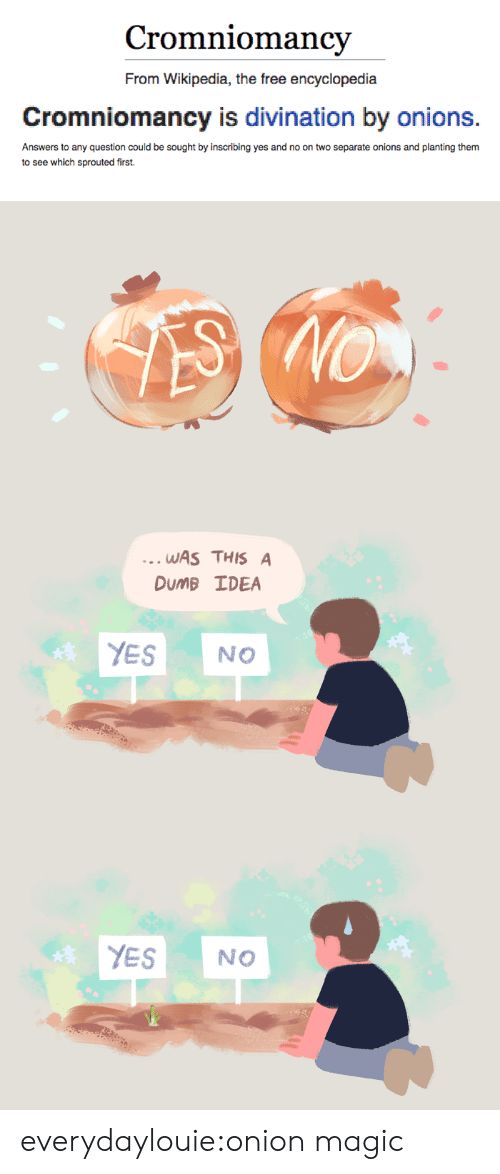 Dumb, Tumblr, and Wikipedia: Cromniomancv  From Wikipedia, the free encyclopedia  Cromniomancy is divination by onions.  Answers to any question could be sought by inscribing yes and no on two separate onions and planting them  to see which sprouted first.   WAS THIS A  DuMB IDEA  YES NO   YES NO everydaylouie:onion magic