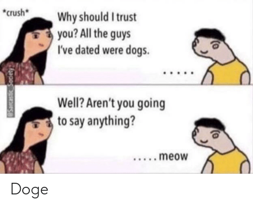 Crush, Doge, and Dogs: crush  Why should I trust  you? All the guys  I've dated were dogs  Well? Aren't you going  to say anything?  ....meow  Sarcastic Society Doge