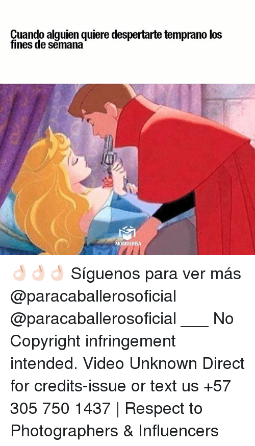 Memes, Respect, and Text: Cuando alguien quiere despertarte temprano los  fines de semana  MORIDERISA 👌🏻👌🏻👌🏻 Síguenos para ver más @paracaballerosoficial @paracaballerosoficial ___ No Copyright infringement intended. Video Unknown Direct for credits-issue or text us +57 305 750 1437 | Respect to Photographers & Influencers