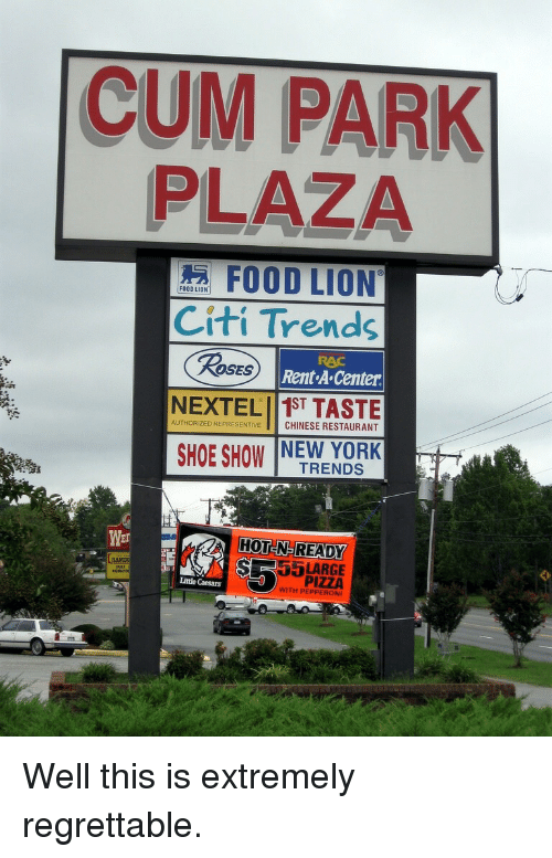 Citi: CUM PARK  PLAZA  FOOD LION  Citi Trends  Rent A Center  RAC  ROSES  AUTHORIZED REPRESENTIVE CHINESE RESTAURANT  SHOE SHOW NEW YORK  TRENDS  HOT N-READY  SR5LARGE  Wer  LAMDU  PIZZA  WITH PEPPEROI  Little Caesars <p>Well this is extremely regrettable.</p>