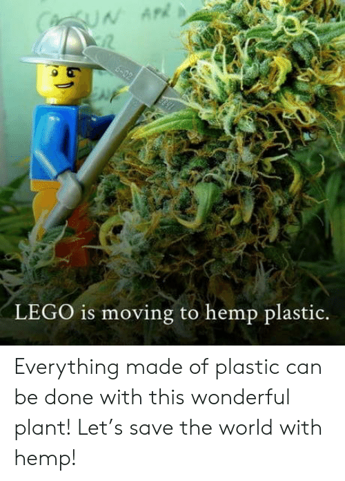 Save The World: CUN AP  6-02  LEGO is moving to hemp plastic. Everything made of plastic can be done with this wonderful plant! Let's save the world with hemp!