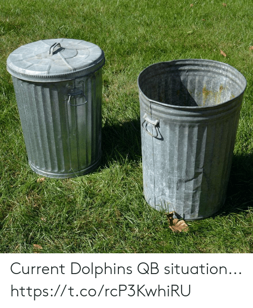 Football, Nfl, and Sports: Current Dolphins QB situation... https://t.co/rcP3KwhiRU