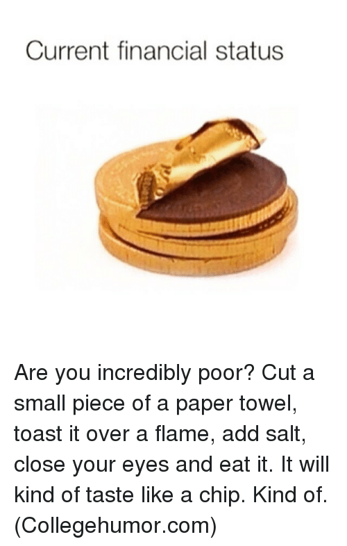 Memes, 🤖, and Salt: Current financial status Are you incredibly poor? Cut a small piece of a paper towel, toast it over a flame, add salt, close your eyes and eat it. It will kind of taste like a chip. Kind of. (Collegehumor.com)