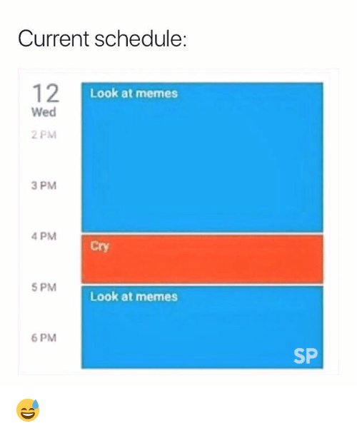 Memes, Schedule, and Cry: Current schedule:  12  Look at memes  Wed  2 PM  3 PM  4 PM  Cry  5 PM  Look at memes  6 PM  SP 😅