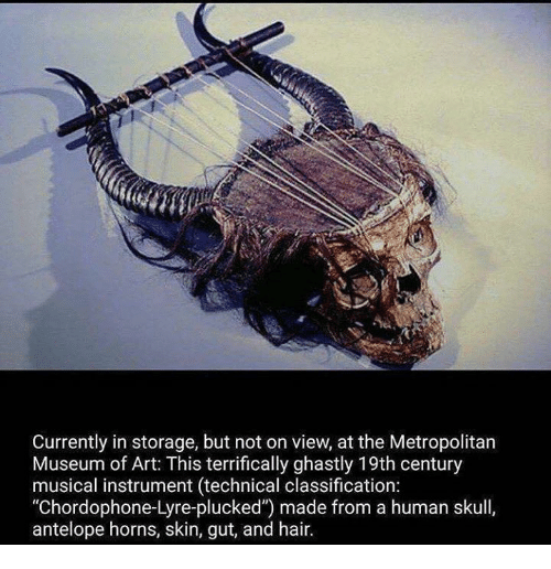 """human skull: currently in storage, but not on view, at the Metropolitan  Museum of Art: This terrifically ghastly 19th century  musical instrument (technical classification:  """"Chordophone-Lyre-plucked') made from a human skull,  antelope horns, skin, gut, and hair."""
