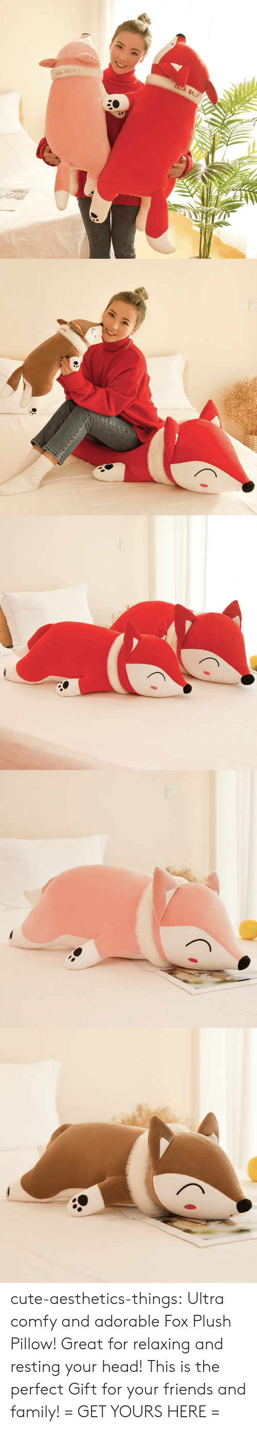 Cute, Family, and Friends: cute-aesthetics-things: Ultra comfy and adorable Fox Plush Pillow! Great for relaxing and resting your head! This is the perfect Gift for your friends and family! = GET YOURS HERE =