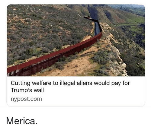 Memes, Aliens, and Nypost: Cutting welfare to illegal aliens would pay for  Trump's wall  nypost.com Merica.