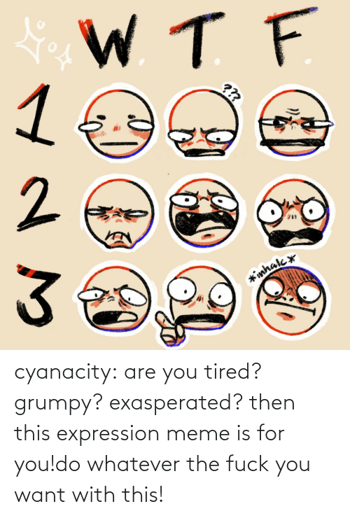 then: cyanacity:  are you tired? grumpy? exasperated? then this expression meme is for you!do whatever the fuck you want with this!