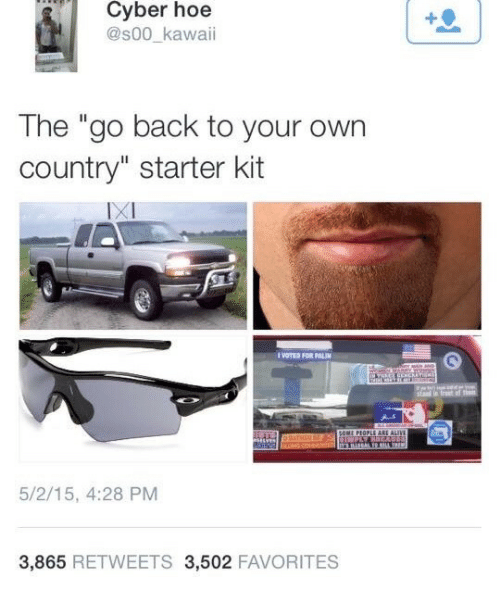"Hoe, Starter Kit, and Back: Cyber hoe  @s00_kawaii  The ""go back to your own  country"" starter kit  IXI  VOTES FOR PALI  5/2/15, 4:28 PM  3,865 RETWEETS 3,502 FAVORITES"
