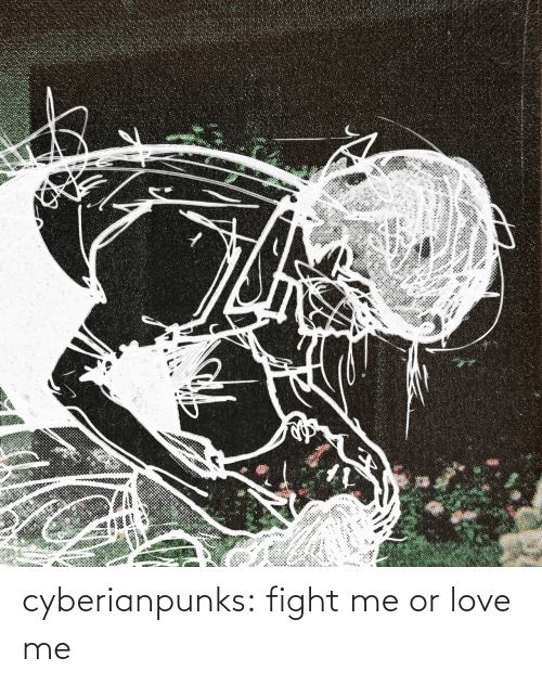 Love, Tumblr, and Blog: cyberianpunks:  fight me or love me