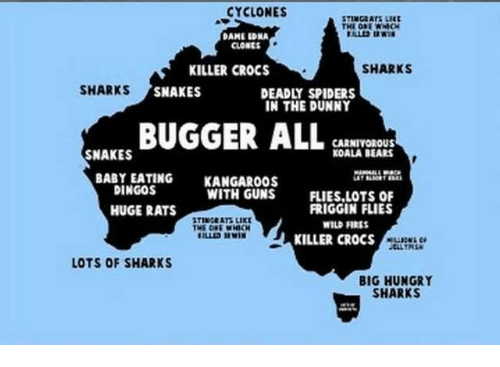 Crocs, Hungry, and Killer Croc: CYCLONES  STINGRATS LIKE  DAME EDNA  CLONES  SHARKS  KILLER CROCS  SHARKS  SNAKES  DEADLY SPIDERS  IN THE DUNNY  BUGGER ALL  CARNIVOROUS  KOALA BEARS  SNAKES  BABY EATING  KANGAROOS  DINGOS  WITH GUNS  FLIES,LOTS OF  FRIGGIN FLIES  HUGE RATS  STINGERT LIKE  WILDFIRES  KILLER CROCS  LOTS OF SHARKS  BIG HUNGRY  SHARKS