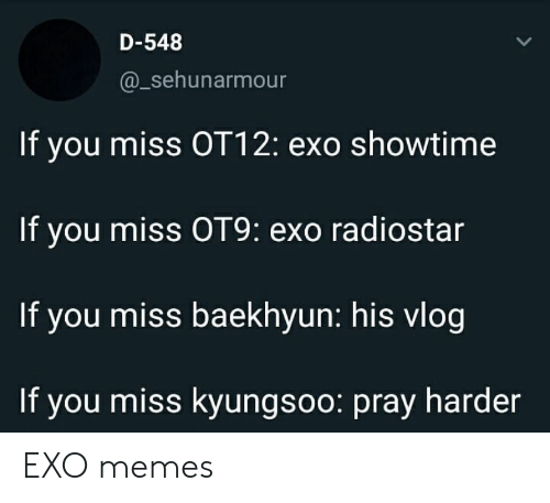 Baekhyun: D-548  @_sehunarmour  If you miss OT12: exo showtime  If you miss OT9: exo radiostar  If you miss baekhyun: his vlog  If you miss kyungsoo: pray harder EXO memes