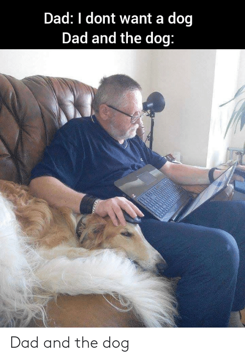 the dog: Dad and the dog