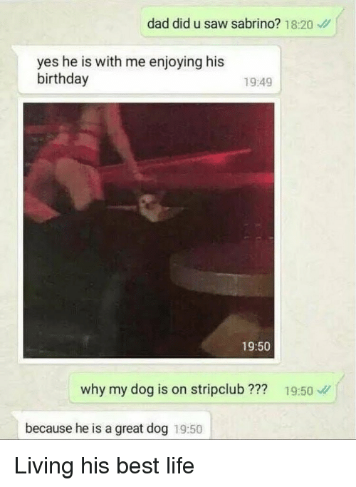 Birthday, Dad, and Life: dad did u saw sabrino? 18:20  yes he is with me enjoying his  birthday  19:49  19:50  why my dog is on stripclub ???  19:50  because he is a great dog 19:50 Living his best life