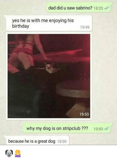 Birthday, Dad, and Dank: dad did u saw sabrino? 18:20  yes he is with me enjoying his  birthday  19:49  19:50  why my dog is on stripclub ??? 19:50  because he is a great dog 19:50 🐶🤷‍♀️