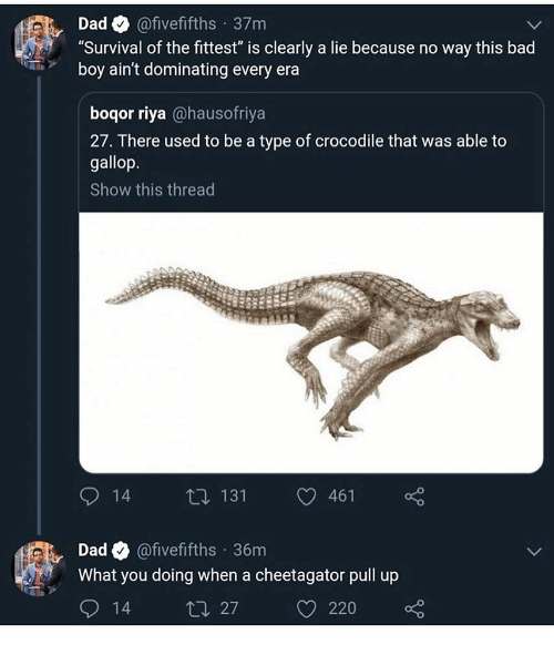 "Bad, Dad, and Memes: Dad@fivefifths 37m  Survival of the fittest"" is clearly a lie because no way this bad  boy ain't dominating every era  boqor riya @hausofriya  27. There used to be a type of crocodile that was able to  gallop.  Show this thread  14 t 131 461  Dad Q @fivefifths 36m  What you doing when a cheetagator pull up  14  27220"