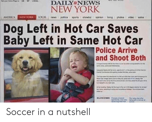 America, New York, and News: DAILY NEws  NEW YORK  AMERICA  AGAİ  LOCAL news poitics sports showbiz. I opinionivingphotosvideo autos  NEW YORK  Dog Left in Hot Car Saves  Baby Left in Same Hot Car  Police Arrive  and Shoot Both Soccer in a nutshell