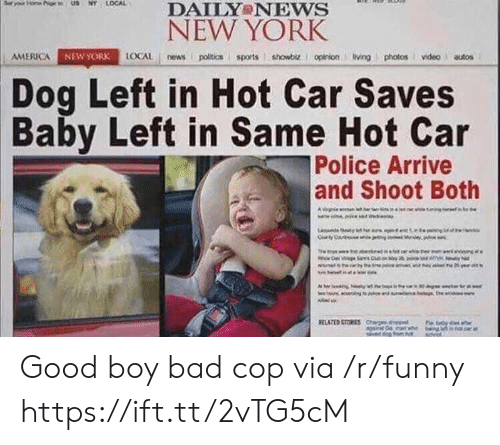 America, Bad, and Funny: DAILY NEws  NEW YORK  AMERICA  NEW YORK  LOCAL news poitics sports showbiz. I opinion living photos videoautos  Dog Left in Hot Car Saves  Baby Left in Same Hot Car  Police Arrive  and Shoot Both Good boy bad cop via /r/funny https://ift.tt/2vTG5cM