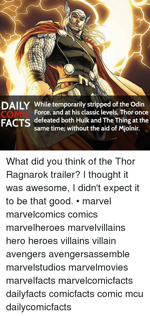 Mjølnir: DAILY While temporarily stripped of the Odin  Force, and at his classic levels, Thor once  defeated both Hulk and The Thing at the  FACTS  same time; without the aid of Mjolnir. What did you think of the Thor Ragnarok trailer? I thought it was awesome, I didn't expect it to be that good. • marvel marvelcomics comics marvelheroes marvelvillains hero heroes villains villain avengers avengersassemble marvelstudios marvelmovies marvelfacts marvelcomicfacts dailyfacts comicfacts comic mcu dailycomicfacts
