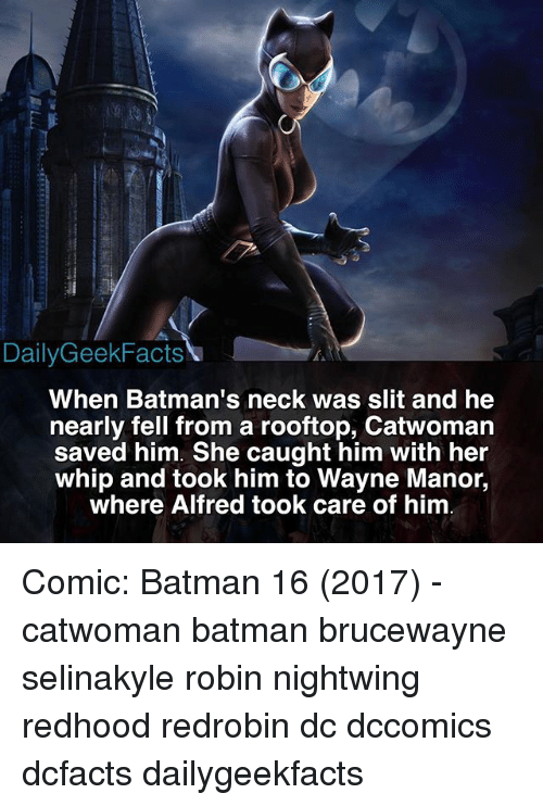Batman, Memes, and Whip: DailyGeekFacts  When Batman's neck was slit and he  nearly fell from a rooftop, Catwomarn  saved him. She caught him with her  whip and took him to Wayne Manor,  where Alfred took care of him Comic: Batman 16 (2017) - catwoman batman brucewayne selinakyle robin nightwing redhood redrobin dc dccomics dcfacts dailygeekfacts