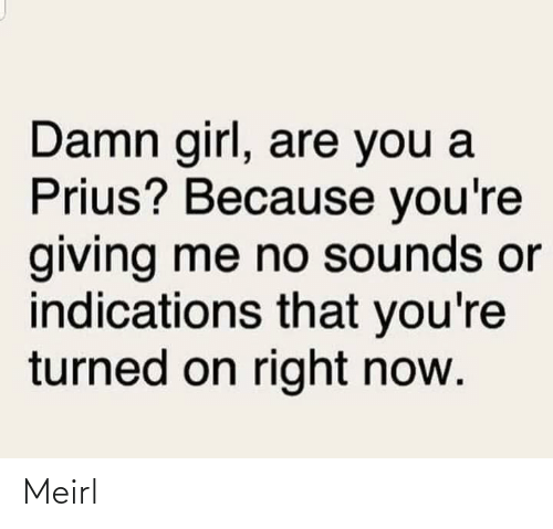 damn: Damn girl, are you a  Prius? Because you're  giving me no sounds or  indications that you're  turned on right now. Meirl