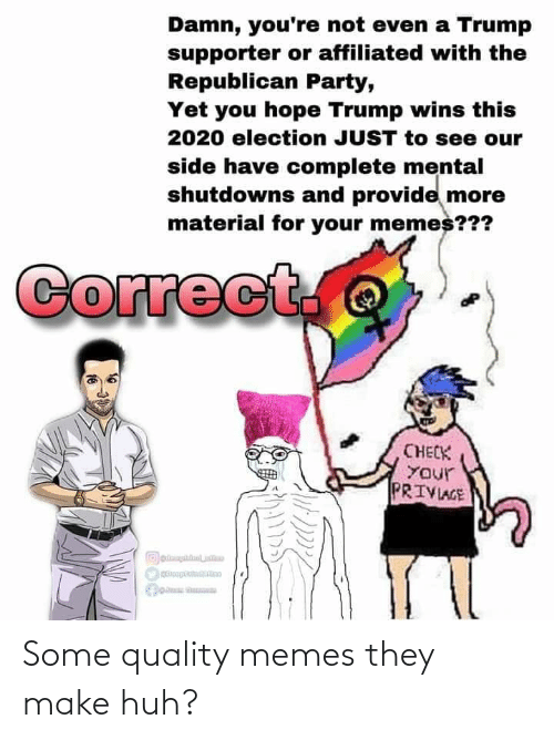 Republican Party: Damn, you're not even a Trump  supporter or affiliated with the  Republican Party,  Yet you hope Trump wins this  2020 election JUST to see our  side have complete mental  shutdowns and provide more  material for your memes???  Correct.  CHECK  YOur  PRIVIAGE Some quality memes they make huh?