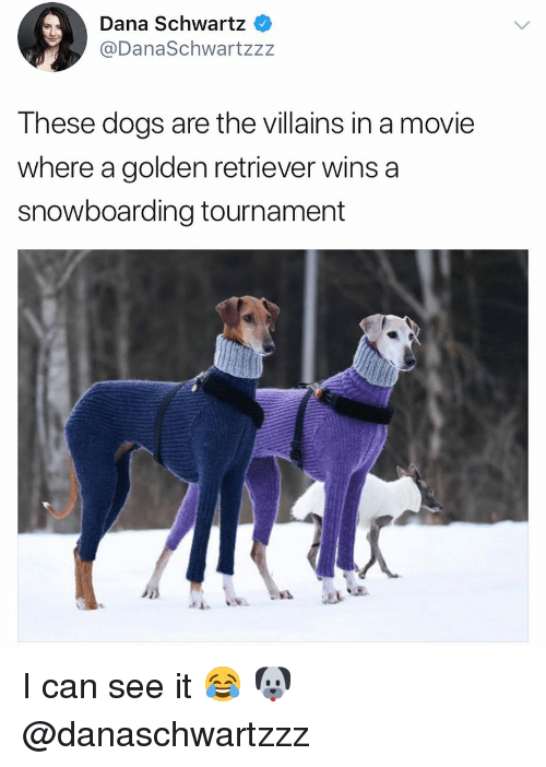 Dogs, Memes, and Golden Retriever: Dana Schwartz  @DanaSchwartzzz  These dogs are the villains in a movie  where a golden retriever wins a  snowboarding tournament  斗 I can see it 😂 🐶 @danaschwartzzz