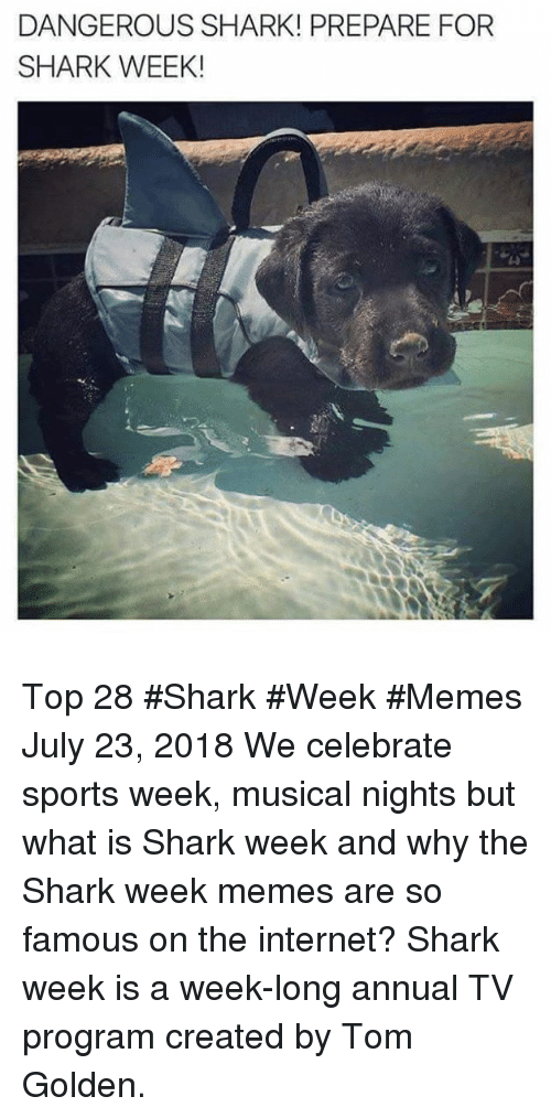 Internet, Memes, and Sports: DANGEROUS SHARK! PREPARE FOR  SHARK WEEK! Top 28 #Shark #Week #Memes  July 23, 2018  We celebrate sports week, musical nights but what is Shark week and why the Shark week memes are so famous on the internet? Shark week is a week-long annual TV program created by Tom Golden.