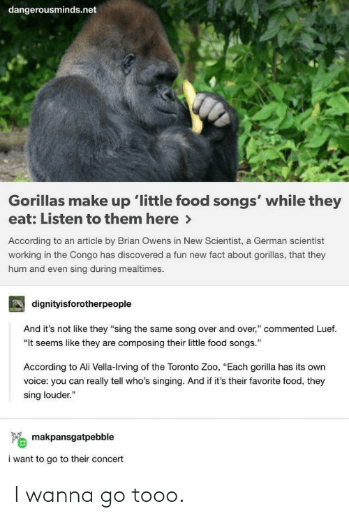 "Ali, Food, and Singing: dangerousminds.net  Gorillas make up 'little food songs' while they  eat: Listen to them here>  According to an article by Brian Owens in New Scientist, a German scientist  working in the Congo has discovered a fun new fact about gorillas, that they  hum and even sing during mealtimes  dignityisforotherpeople  And it's not like they ""sing the same song over and over,"" commented Luef.  ""It seems like they are composing their little food songs.  According to Ali Vella-Irving of the Toronto Zoo, ""Each gorilla has its own  voice: you can really tell who's singing. And if it's their favorite food, they  sing louder.""  makpansgatpebble  i want to go to their concert I wanna go tooo."