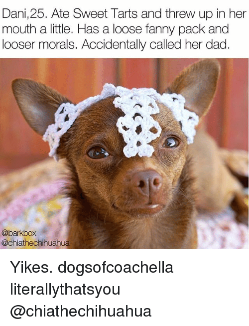 Dad, Memes, and 🤖: Dani,25. Ate Sweet Tarts and threw up in her  mouth a little. Has a loose fanny pack and  looser morals. Accidentally called her dad.  @barkbox  @chiathechihuahua Yikes. dogsofcoachella literallythatsyou @chiathechihuahua