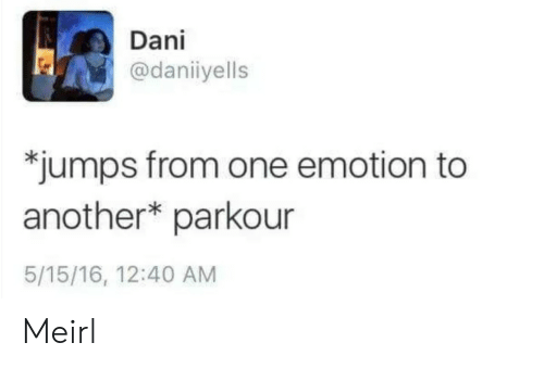Parkour, MeIRL, and Another: Dani  @daniiyells  *jumps from one emotion to  another* parkour  5/15/16, 12:40 AM Meirl
