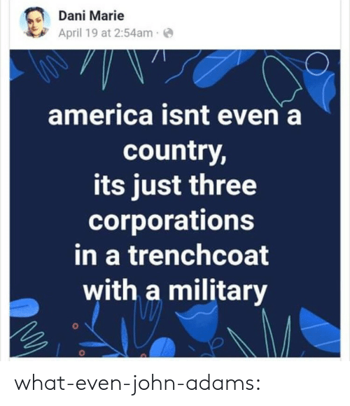 America, Tumblr, and Blog: Dani Marie  April 19 at 2:54ame  america isnt even a  country,  its just three  corporations  in a trenchcoat  with a military what-even-john-adams: