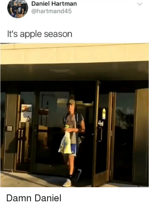 Apple, Memes, and Damn Daniel: Daniel Hartman  @hartmand45  It's apple season Damn Daniel