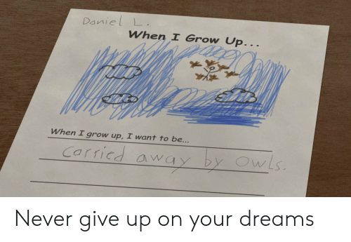 never give up: Daniel L  When I Grow Up...  When I grow up, I want to be...  Carricd away by OwLs Never give up on your dreams