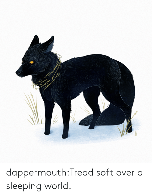 Tumblr, Blog, and Http: dappermouth:Tread soft over a sleeping world.