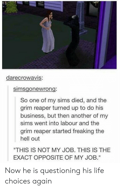 "Questioning: darecrowaVIS:  simsgonewrong  So one of my sims died, and the  grim reaper turned up to do his  business, but then another of my  sims went into labour and the  grim reaper started freaking the  hell out  ""THIS IS NOT MY JOB. THIS IS THE  EXACT OPPOSITE OF MY JOB."" Now he is questioning his life choices again"