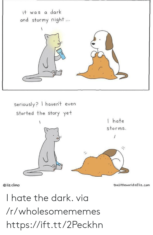 Dark, Com, and The Dark: dark  it was  and stormy night...  Seriously? haven't even  storted the Story yet  I hate  storms.  liz climo  thelittleworld ofliz.com I hate the dark. via /r/wholesomememes https://ift.tt/2Peckhn