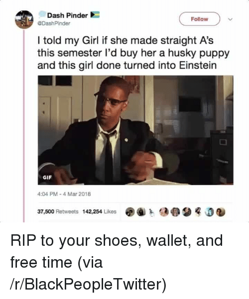 Blackpeopletwitter, Gif, and Shoes: Dash Pinder  DashPinder  Follow  I told my Girl if she made straight A's  this semester l'd buy her a husky puppy  and this girl done turned into Einstein  GIF  4:04 PM 4 Mar 2018  37,500 Retweets  142,254 Likes  j <p>RIP to your shoes, wallet, and free time (via /r/BlackPeopleTwitter)</p>