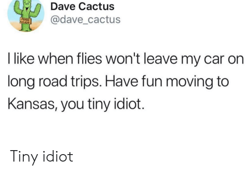 Idiot, Fun, and Car: Dave Cactus  @dave cactus  I like when flies won't leave my car on  long road trips. Have fun moving to  Kansas, you tiny idiot. Tiny idiot