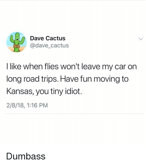 Dank Memes, Idiot, and Fun: Dave Cactus  @dave_cactus  I like when flies won't leave my car on  long road trips. Have fun moving to  Kansas, you tiny idiot.  2/8/18, 1:16 PM Dumbass