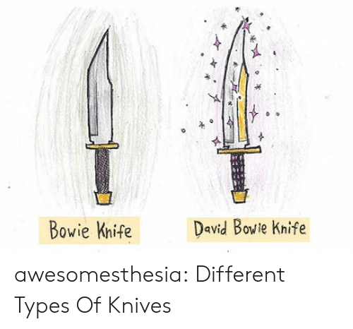 Different Types: David Bowie Knife  Bowie Knife awesomesthesia:  Different Types Of Knives