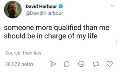 Life, Humans of Tumblr, and Source: David Harbour  @DavidKHarbour  someone more qualified than me  should be in charge of my life  Source: thexfiles  38,972 notes D