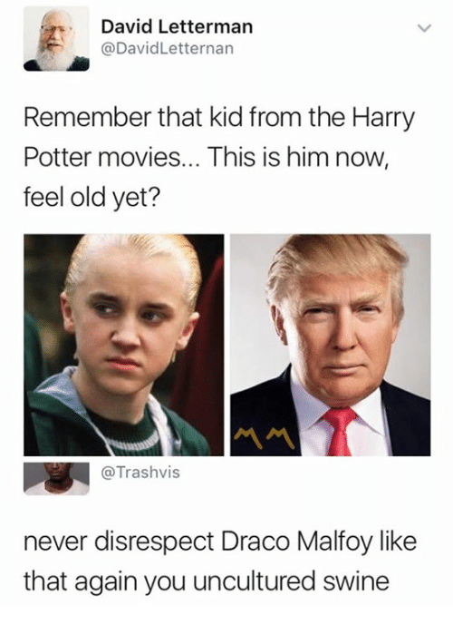 Feeling Old: David Letterman  @DavidLetternan  Remember that kid from the Harry  Potter movies... This is him now,  feel old yet?  @Trashvis  never disrespect Draco Malfoy like  that again you uncultured swine