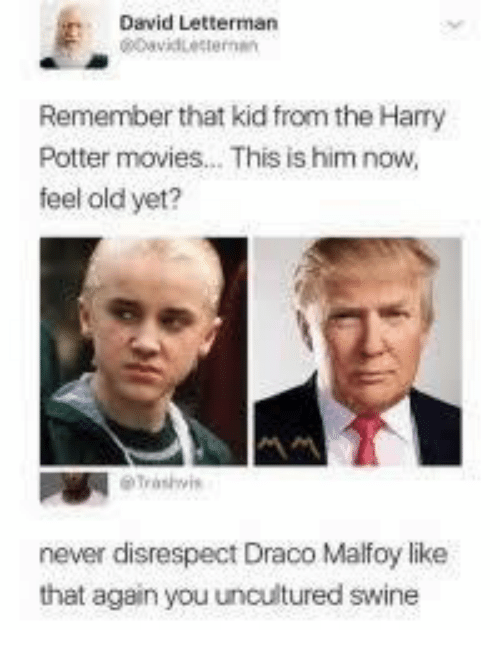 Harry Potter, Movies, and David Letterman: David Letterman  Remember that kid from the Harry  Potter movies... This is him now,  feel old yet?  never disrespect Draco Malfoy like  that again you uncultured swine