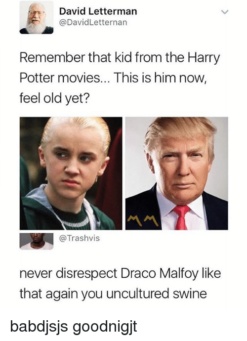Feeling Old: David Lettermarn  @DavidLetternan  Remember that kid from the Harry  Potter movies... This is him now,  feel old yet?  @Trashvis  never disrespect Draco Malfoy like  that again you uncultured swine babdjsjs goodnigjt