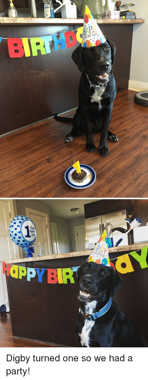 Appy: DAWN  CLEAN   APPy  Doy  P YBIR Digby turned one so we had a party!