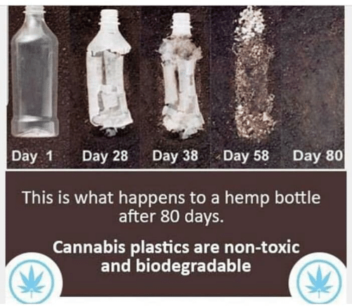 Memes, Cannabis, and 🤖: Day 1 Day 28Day 38Day 58 Day 80  This is what happens to a hemp bottle  after 80 days.  Cannabis plastics are non-toxic  and biodegradable