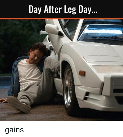 Day After Leg Day: Day After Leg Day. gains