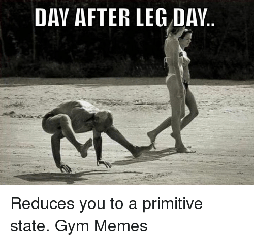 Gym, Memes, and Leg Day: DAY AFTER LEG DAY Reduces you to a primitive state.  Gym Memes