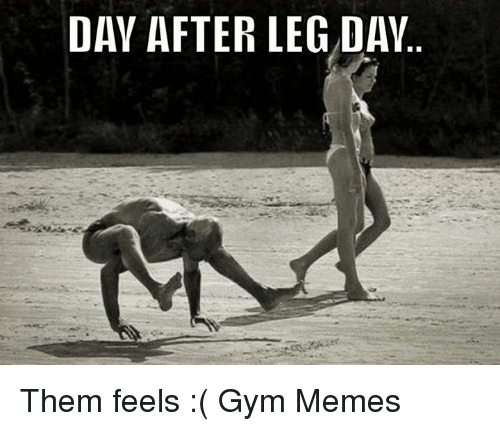 Day After Leg Day: DAY AFTER LEG DAY Them feels :(   Gym Memes